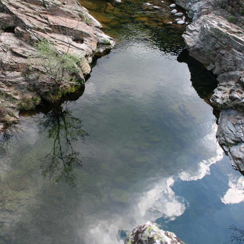 reflet-riviere copie