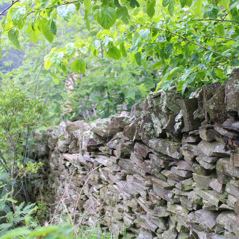 murs-3